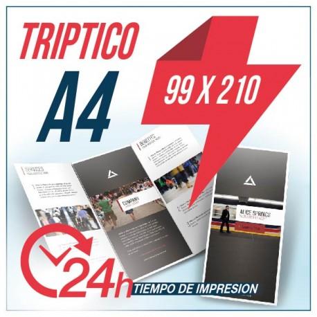 Flyers Triptico 99 x 210 m.m